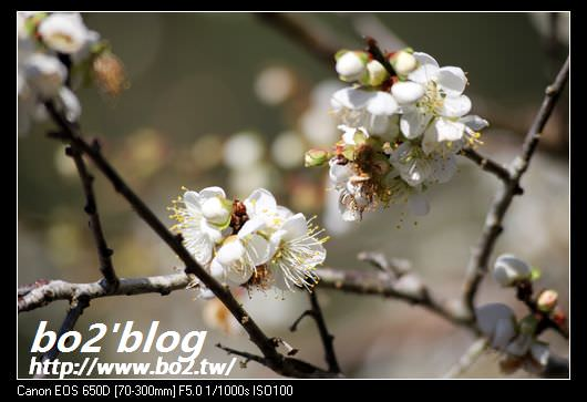 IMG_7901